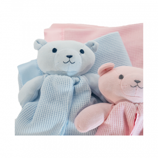thermal and buddy pink and blue teddy my story blankets